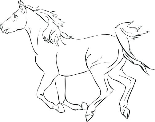 504x397 Coloring Page Of Horse Horse Color Pages Horse Coloring Pages Free