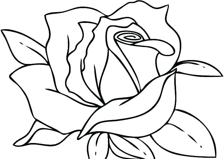 743x527 Human Heart Coloring Page Human Heart Coloring Page Valentine