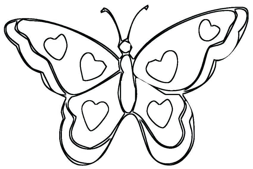 850x567 Color Page Butterfly An Overview Of All Kind Of Valentines Day