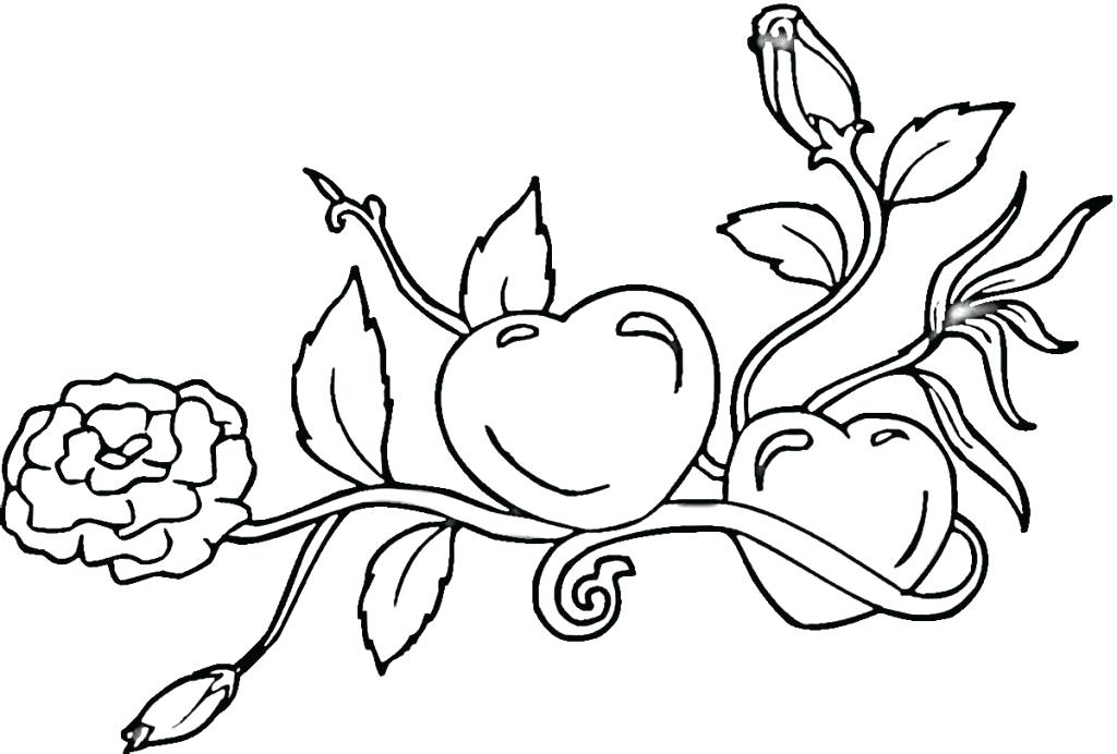1024x692 Calgary Flames Coloring Pages Flames Calgary Flames Coloring