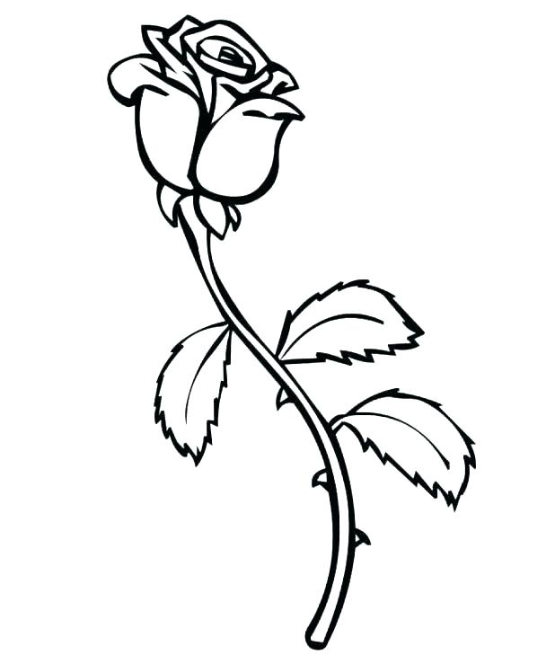 618x729 Bouquet Of Roses Coloring Pages Page Image Images Dark Bleeding