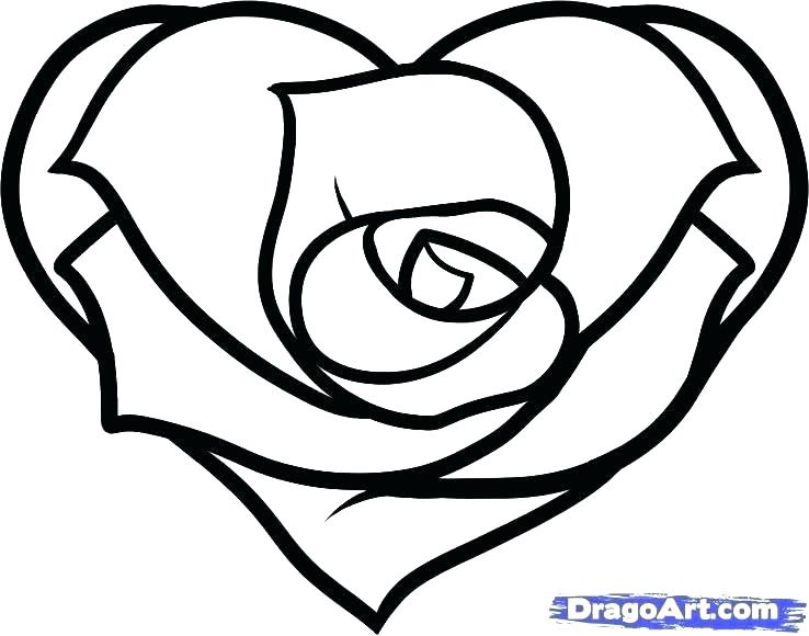 738x580 Coloring Page Heart Coloring Page Rose Drawn Hearts Rose