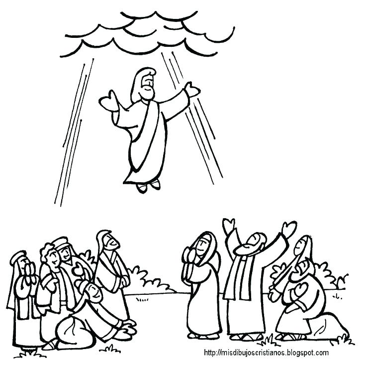 736x733 Jesus In The Temple Craft Ascension Coloring Pages View S