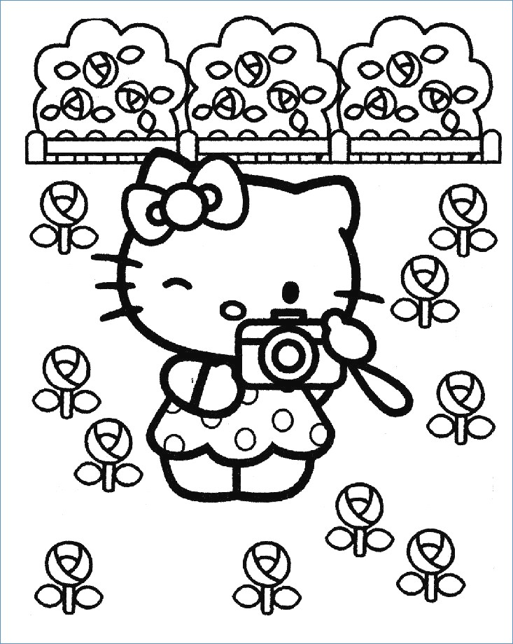 733x920 Fancy Hello Kitty Beach Coloring Pages Elaboration