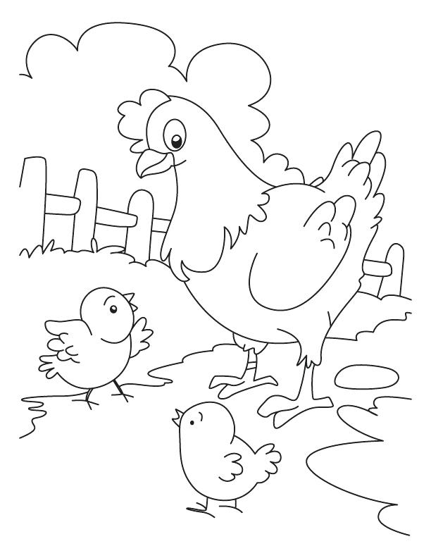 612x792 Chicken Color Page Hen And Chicken Coloring Page Baby Chick