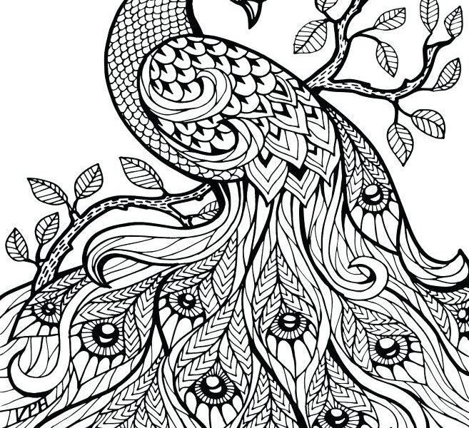 Henna Animal Coloring Pages At Getdrawings Com Free For Personal