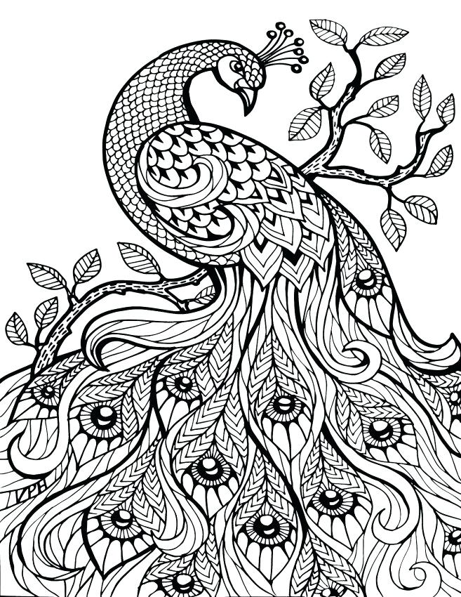 The best free Henna coloring page images. Download from 182 free ...