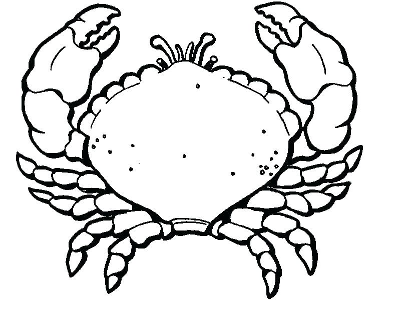 795x634 Crab Coloring Pages Crab Coloring Pages Mesmerizing Crab Coloring