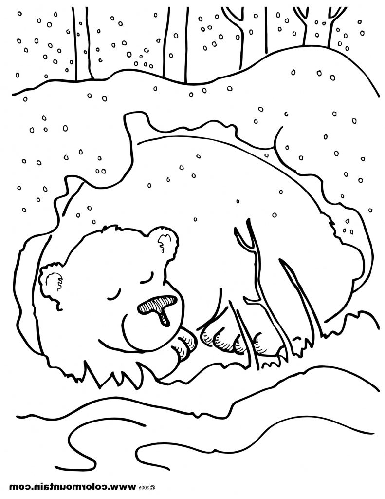 791x1024 Hibernating Animals Coloring Pages Qlyview Com Incredible