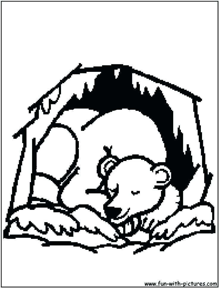 736x966 Hibernation Coloring Pages Coloring Pages Of Bears Coloring Pages