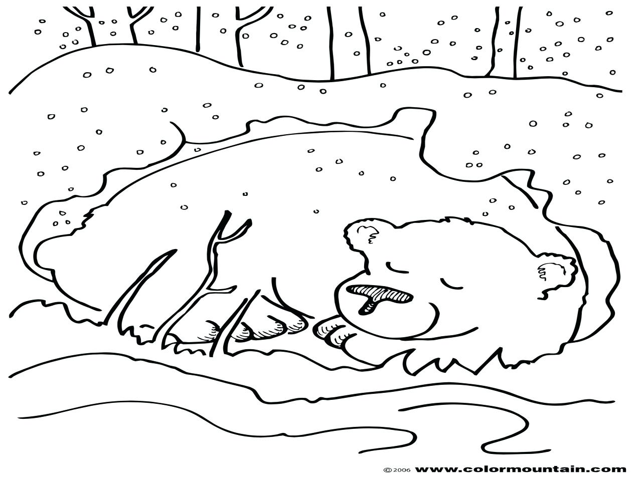 1280x960 Hibernating Bear Coloring Page