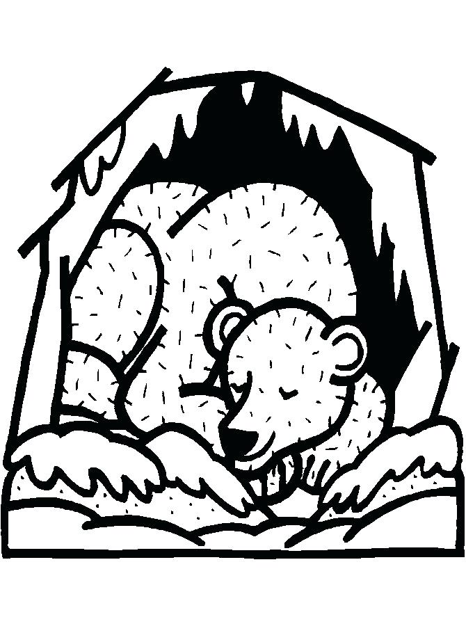 670x910 Hibernating Bear Coloring Page Hibernating Bear Colouring Page