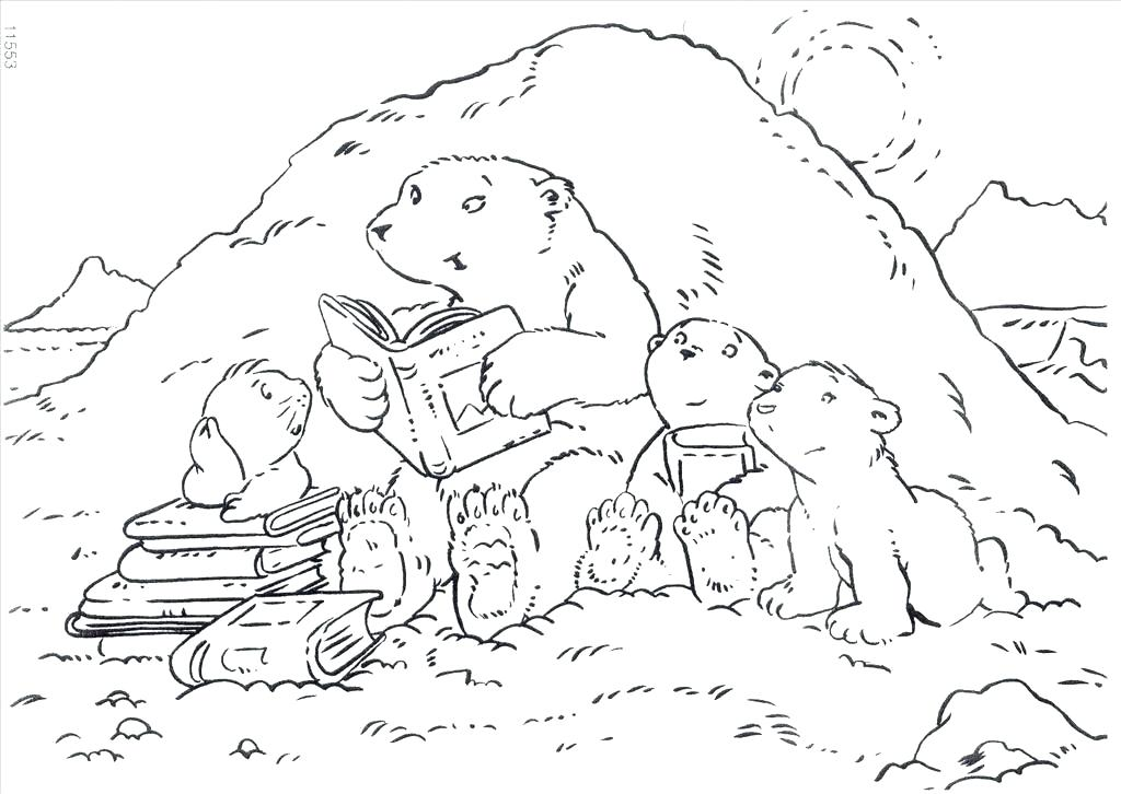 1024x726 Hibernating Bear Coloring Page Polar Bear Coloring Page Great