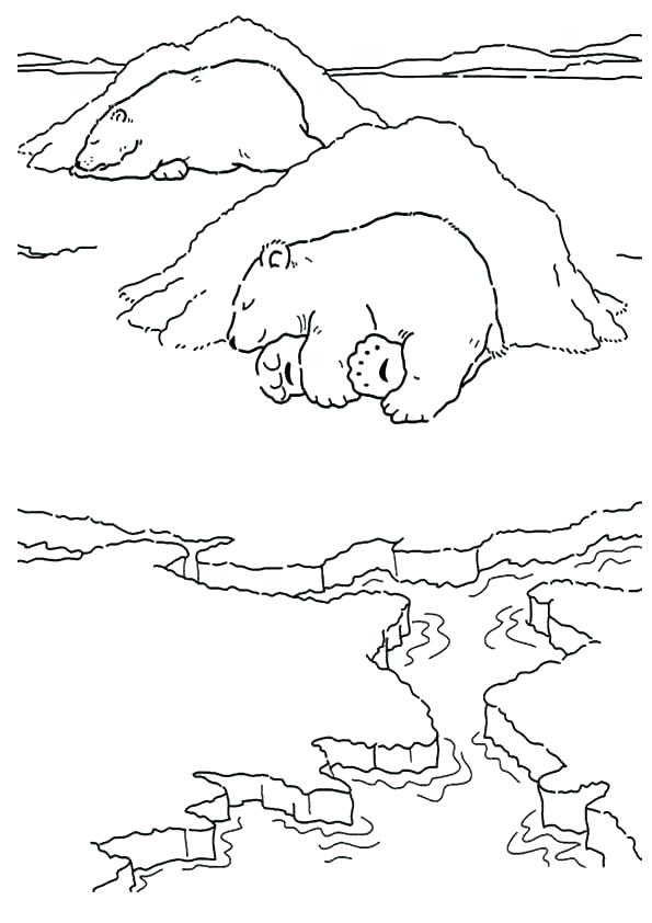 595x842 Printable Smokey The Bear Coloring Pages Kids Coloring Hibernating
