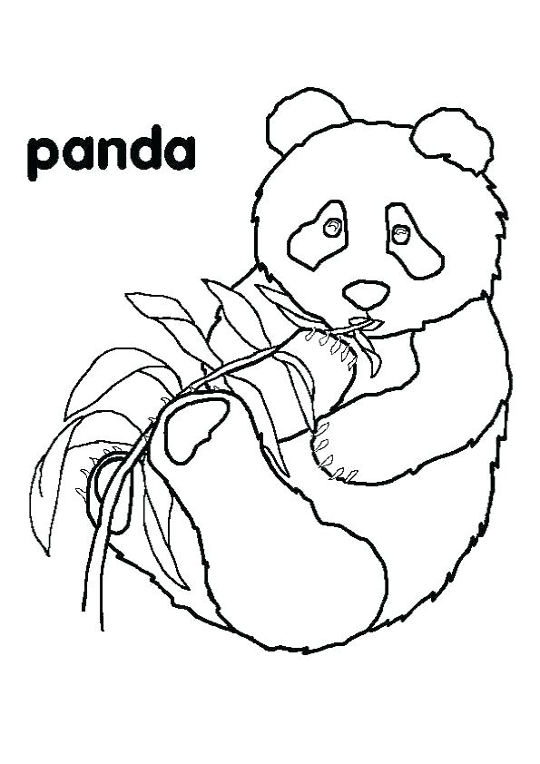 free printable coloring pages hibernating animals which animals ... | 842x595