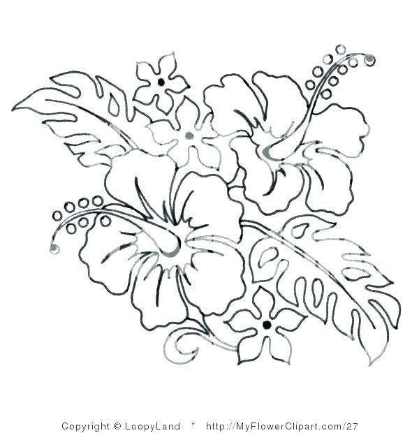 600x620 Hibiscus Coloring Page Hibiscus Coloring Pages Hibiscus Flower