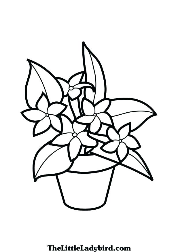 618x875 Hibiscus Flower Coloring Pages Hibiscus Coloring Page Hibiscus