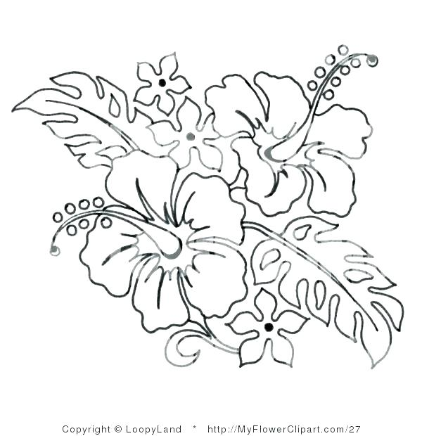 600x620 Hibiscus Flower Coloring Pages Hibiscus Flower Coloring Pages