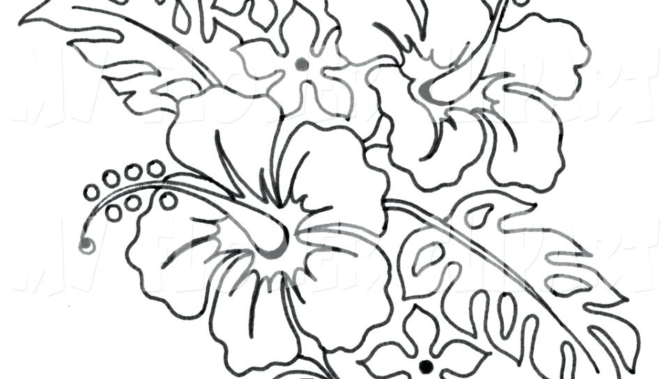 960x544 Printable Hibiscus Flower Coloring Pages Realistic Flowers Page