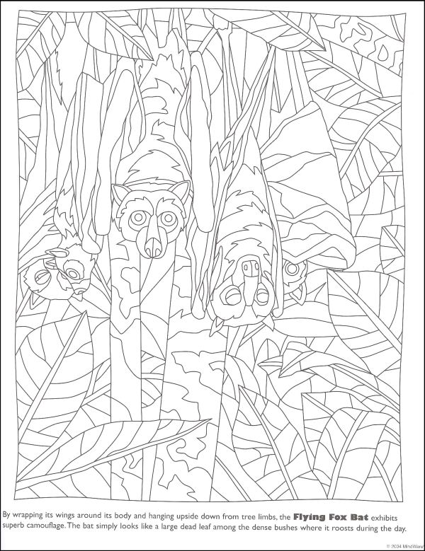Hidden Coloring Pages