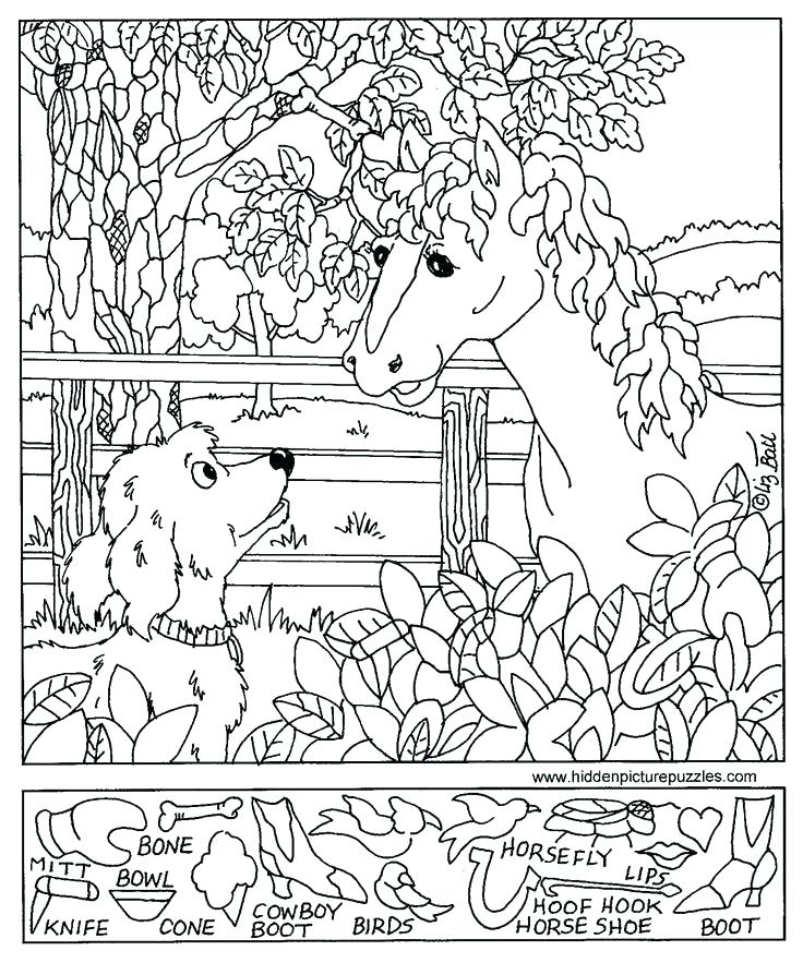 736x883 Hidden Picture Coloring Pages Best Images Of Hidden Pictures