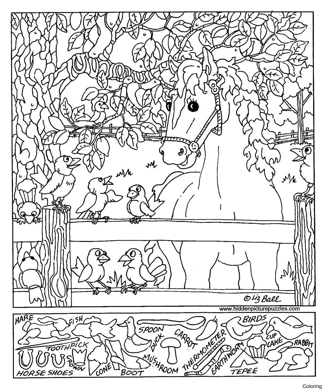 1073x1289 Coloring Pages For Adults With Hidden Objects