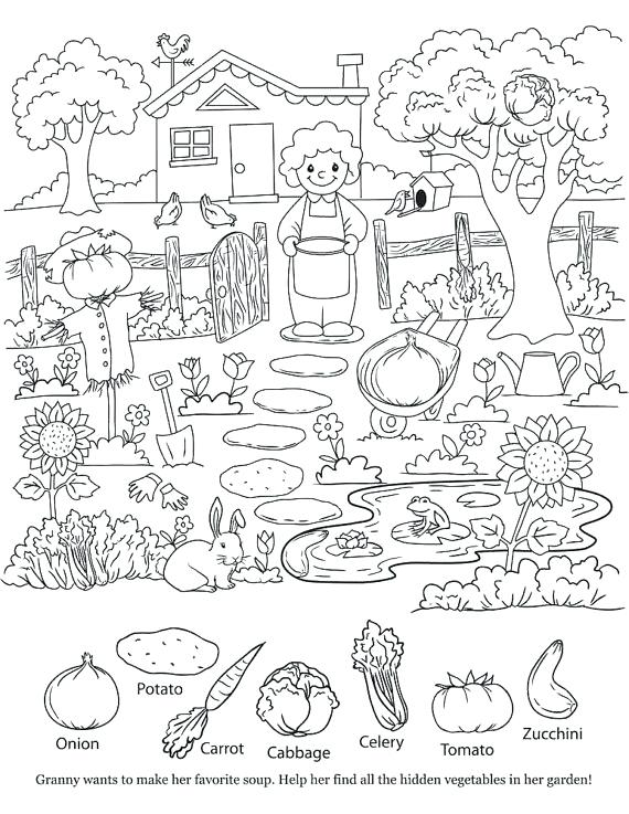 570x737 Hidden Picture Coloring Pages