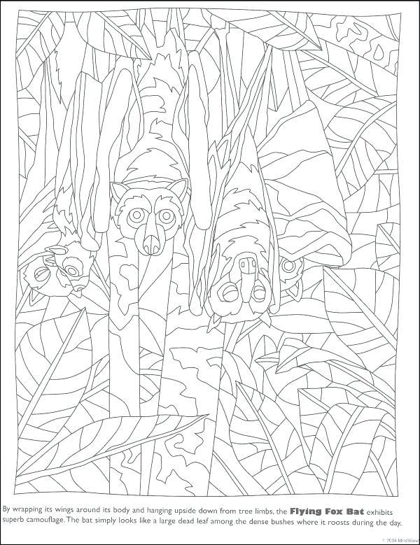 600x779 Hidden Picture Coloring Pages Printable Hidden Picture Hidden