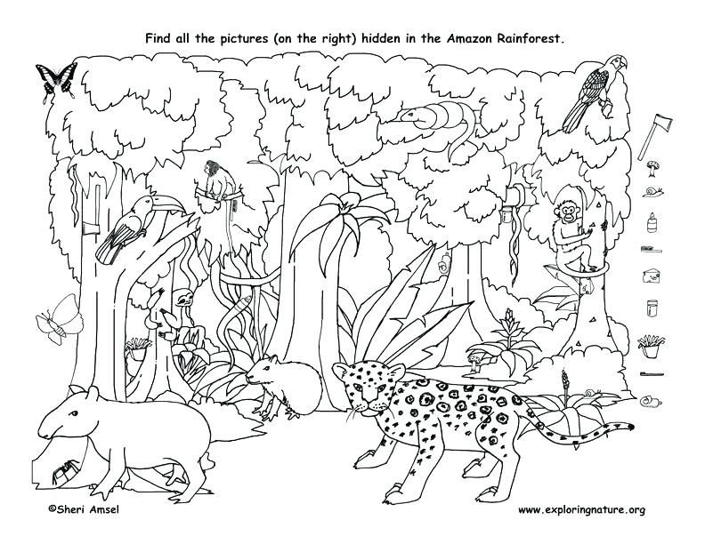 792x612 Hidden Pictures Coloring Sheets Ables Halloween Hidden Pictures