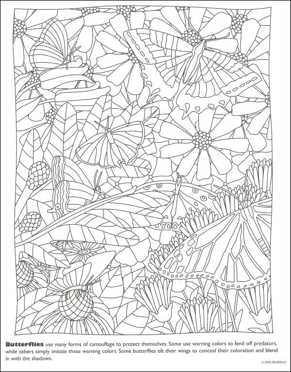 600x766 Mindware Hidden Coloring Pages