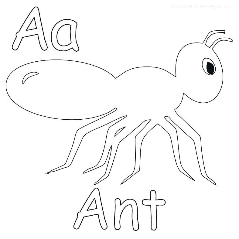 787x787 Ant Coloring Page Ant Ant Hill Coloring Page