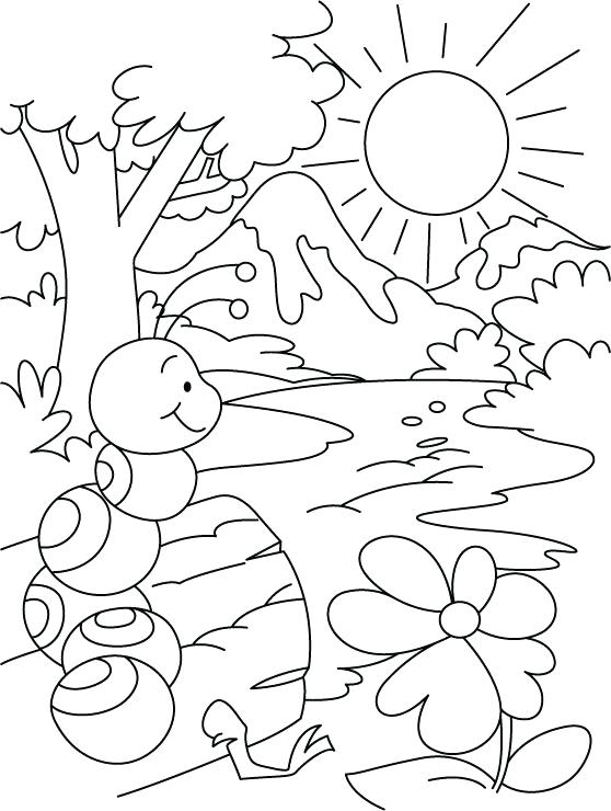 558x740 Ant Coloring Page Bullet Ant Coloring Page Ant Hill Colouring