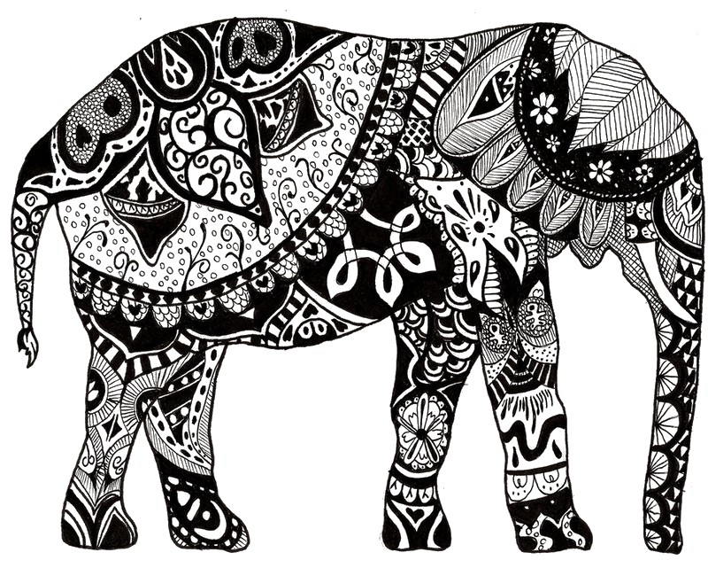 800x641 Adult Coloring Page India Indian Elephant