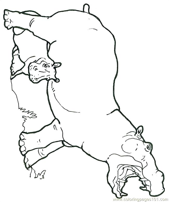 650x777 Coloring Page Hippo Mural Hippo With Baby Reversed Coloring Page