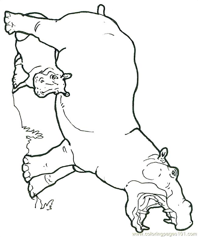 650x777 Hippo Coloring Pages Mural Hippo With Baby Reversed Coloring Page