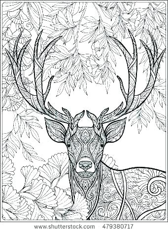 341x470 Hunting Coloring Pages Bear Hunting Coloring Pages Hog Hunting