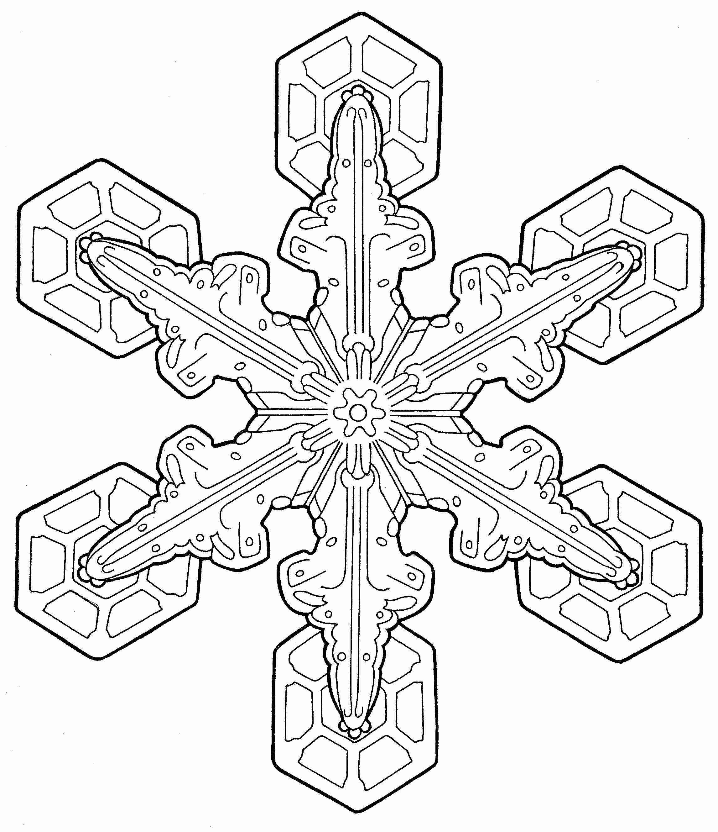 fancy mandala coloring pages - photo#29