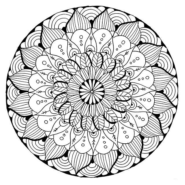640x640 Alisa Burke Mandala Coloring Page Printable Adults Animal