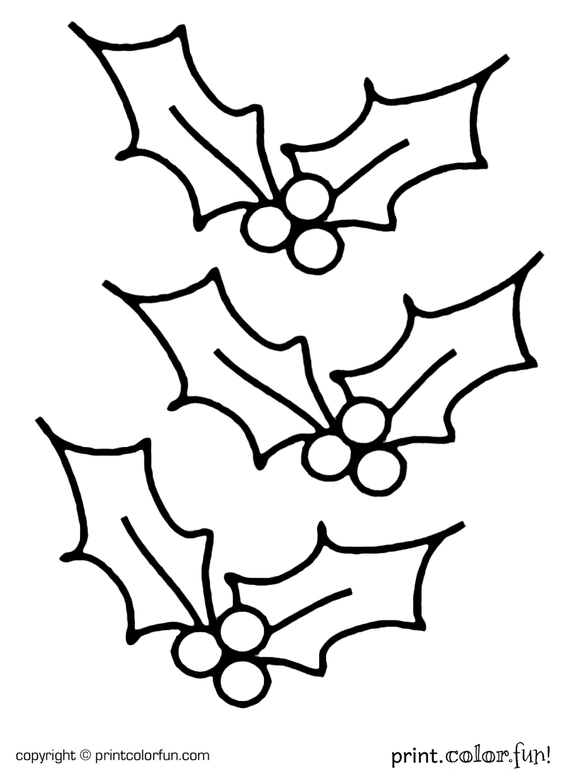 800x1100 Christmas Holly Coloring Pages