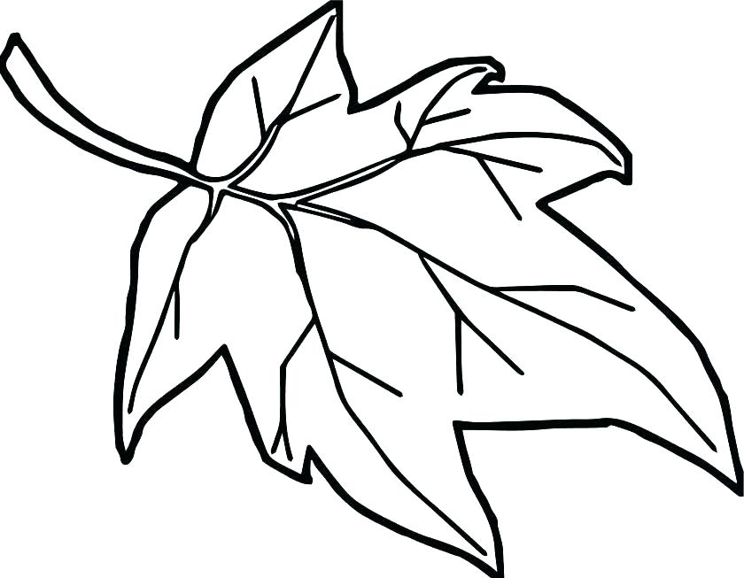 840x653 Holly Leaves Coloring Pages Leaves Coloring Pages Leaf Coloring