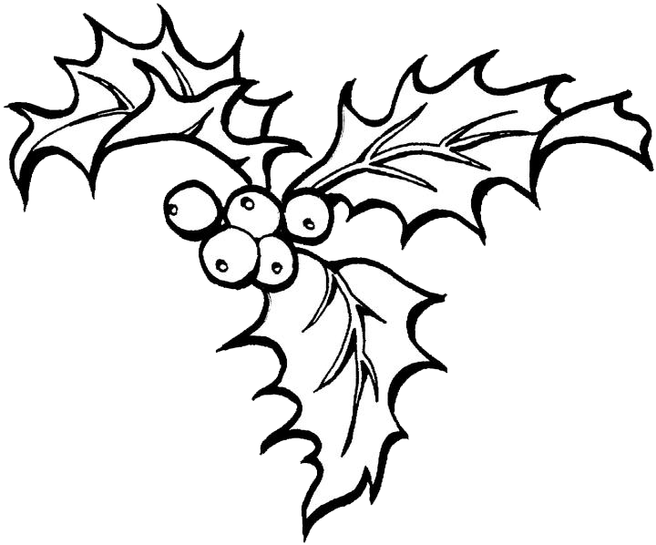 720x598 Christmas Holly Coloring Pages