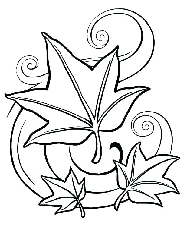 618x773 Coloring Pages Of Leaves Fall Leaf Coloring Page Leaves Coloring