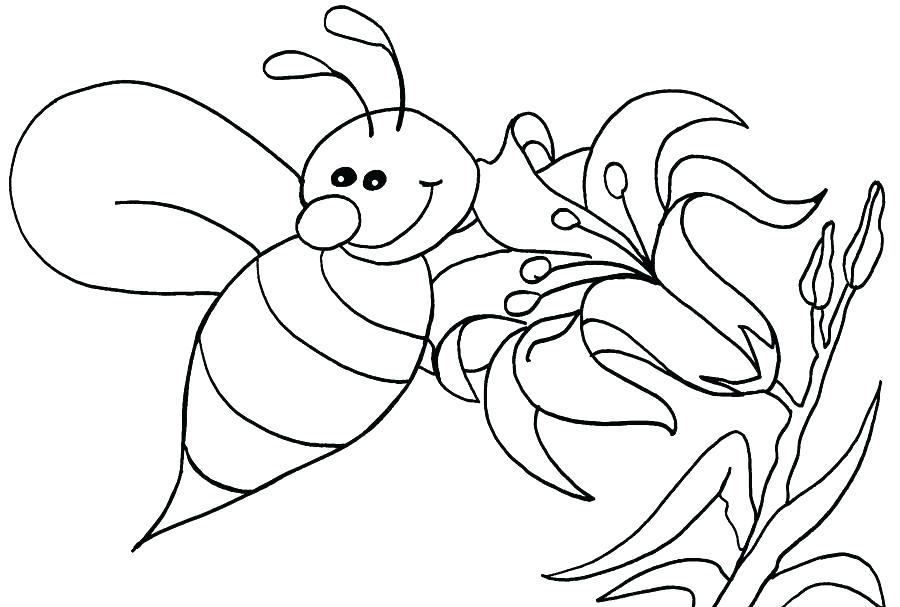 900x607 Bee To Color Honey Bee Pictures To Color Printable Bee Impressive