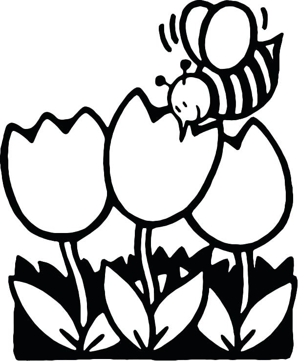 610x739 Honey Bee Coloring Page Bee Coloring Pages Printable Bee Coloring