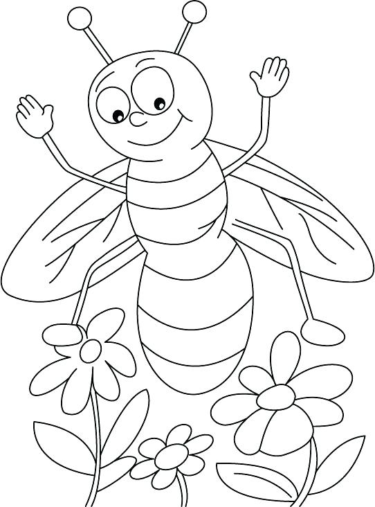 542x732 Honey Bee Coloring Pages In Addition To Cartoon Bee And Flower