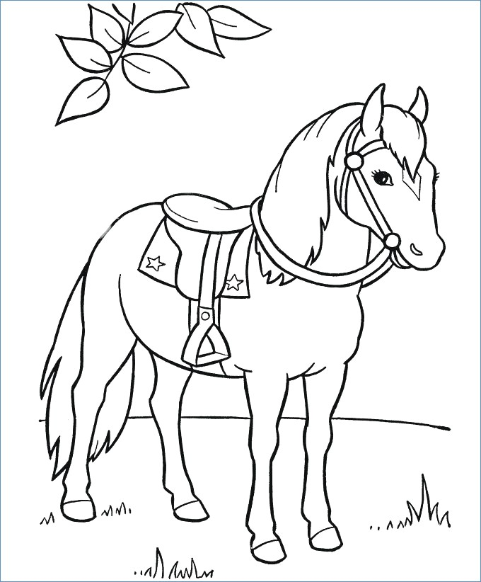 680x822 Race Horse Coloring Page For Prescool