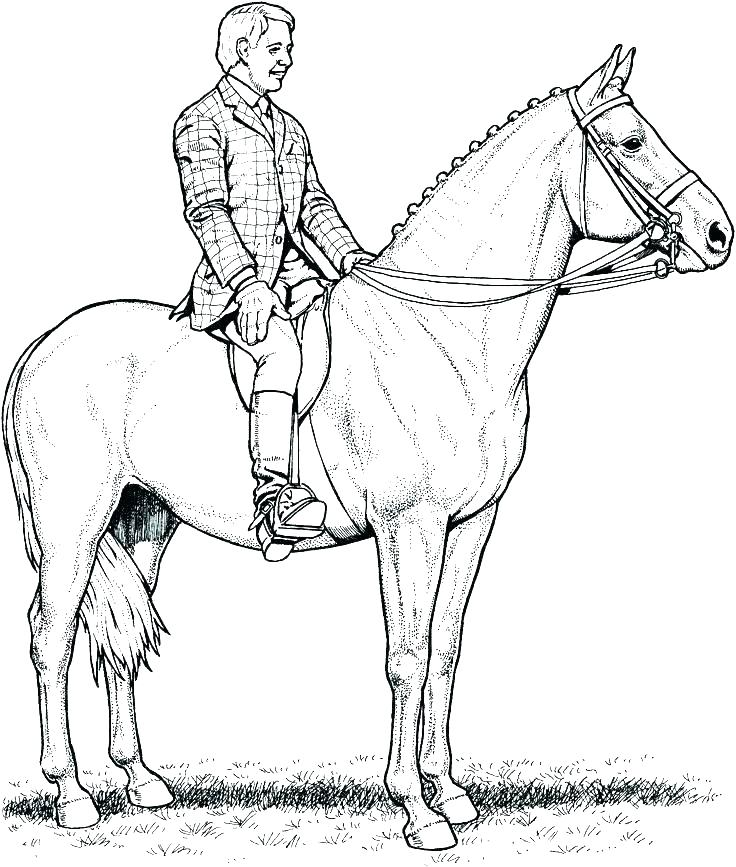 736x867 Horse Jumping Coloring Pages Coloring Pages Of Horses Jumping