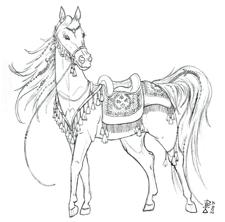 736x727 Horse Coloring Pages Free Horse Pictures For Coloring Unicorn