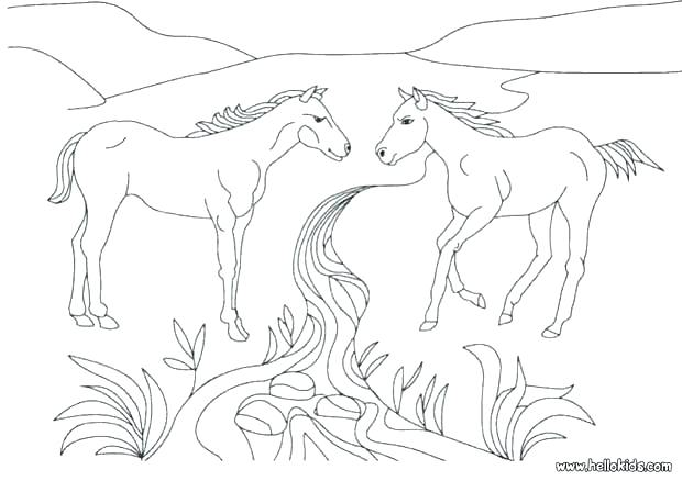 620x438 Coloring Pages Horses