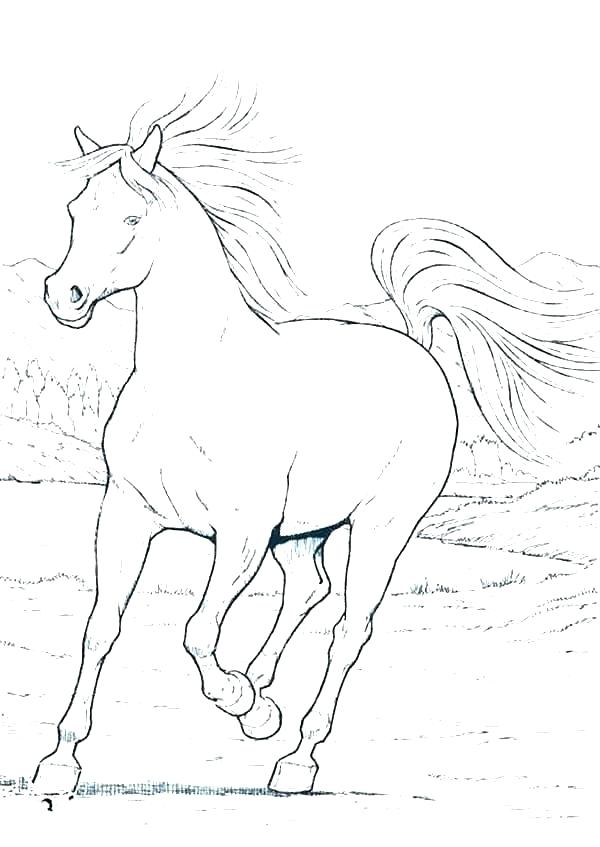 600x847 Coloring Horse Pages Horse And Carriage Coloring Pages Free Kids